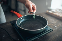 Male chef hands puts rosemary in a frying pan Stock Image