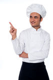 Male chef looking and pointing away Stock Photography