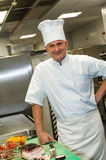 Male chef posing in commercial kitchen Royalty Free Stock Image