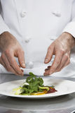 Male Chef Preparing Salad Royalty Free Stock Photos