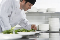 Male Chef Preparing Salad In Kitchen. Side view of a male chef preparing salad in kitchen Royalty Free Stock Image