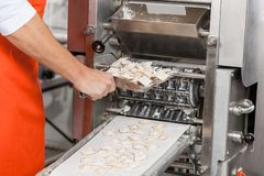 Male Chef Removing Ravioli Pasta From Machine Royalty Free Stock Images