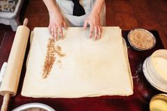 Male chef sprinkle the dough with cinnamon. Apple strudel cooking. Homemade sweet dessert, tasty pie preparation process Royalty Free Stock Photos