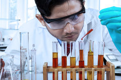 Male chemist pouring chemical fluid Stock Images