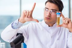 The male chemist working in lab. Male chemist working in lab Royalty Free Stock Photography