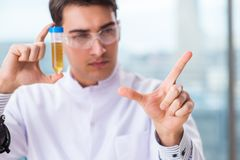 The male chemist working in lab. Male chemist working in lab Stock Photo