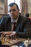 Male Chess player Stock Images