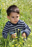 Male child in a flower field. Squatting Stock Images