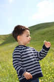 Male child holding a daisy. In the grass Stock Photography
