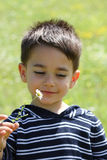 Male child smiling to a daisy. In the field Stock Photo
