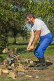 Male chopping logs Stock Images