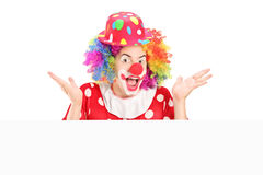 Male clown gesturing behind blank panel. On white background Royalty Free Stock Photo