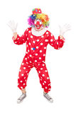 Male clown gesturing with hands. Full length portrait of a male clown gesturing with hands isolated on white background Royalty Free Stock Photo