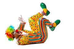 The male clown isolated on white. Male clown isolated on white royalty free stock image