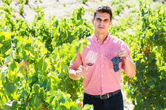 Male with clusters of grape and wine. Male vintner with clusters of grape and wine outdoors Royalty Free Stock Photography