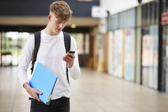 Male College Student Reading Text Message On Mobile Phone Stock Images