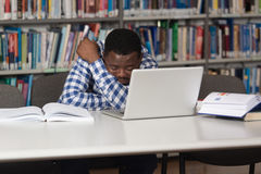 Male College Student Stressed About His Homework Stock Photos