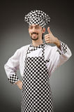 Male cook in the apron Royalty Free Stock Photo
