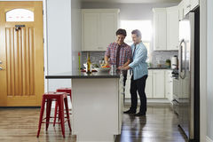 Male couple in the kitchen preparing a meal, looking down Stock Images