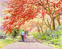 Male couple walking on the street in the morning garden. Watercolor landscape original painting pink color of wild himalayan cherry flower and emotion in sky Royalty Free Stock Images