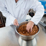 Male craftsman hands selecting freshly prepared almonds for sweet nougat Royalty Free Stock Images
