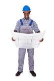 Male Craftsman Holding Blueprint Stock Photo