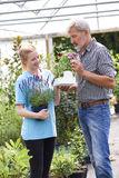 Male Customer Asking Staff For Plant Advice At Garden Center Stock Photos