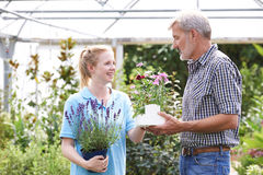 Male Customer Asking Staff For Plant Advice At Garden Center Royalty Free Stock Image