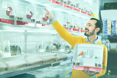 Male customer boasting his purchase of canary bird Royalty Free Stock Photography