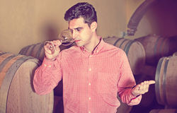 Male customer tasting red wine from wooden barrels. Happy male customer tasting red wine from wooden barrels in factory Royalty Free Stock Photos