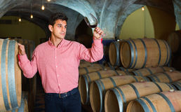 Male customer tasting red wine from wooden barrels. Satisfied male customer tasting red wine from wooden barrels in factory Stock Images