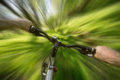 Male cyclist traveling through the woods Stock Image