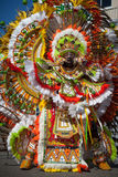 Male dancer in Junkanoo, Nassau Royalty Free Stock Photo