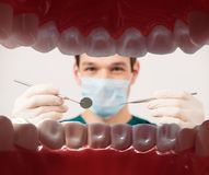 Male dentist holding dental tools Royalty Free Stock Image