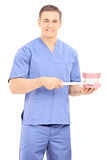 Male dentist holding a toothbrush and a denture Stock Photo