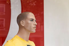 Male display dummy. Portrait of a male dummy in window display Stock Image