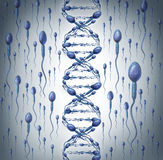 Male DNA Stock Photography