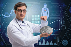 The male doctor with the brain in medical concept Stock Photography