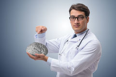 The male doctor with the brain in medical concept Stock Photos