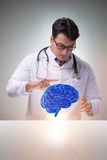 The male doctor with the brain in medical concept Royalty Free Stock Photography