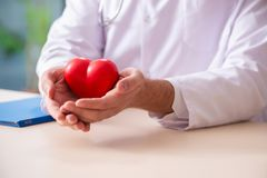 The male doctor cardiologist holding heart model. Male doctor cardiologist holding heart model stock photos