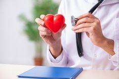 The male doctor cardiologist holding heart model. Male doctor cardiologist holding heart model stock photography
