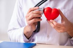 The male doctor cardiologist holding heart model royalty free stock photography