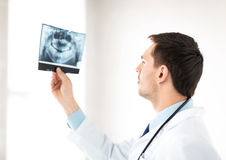 Male doctor or dentist looking at x-ray Stock Photography