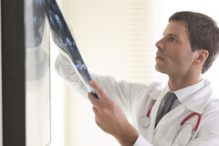 Male Doctor Examining CAT scan Stock Images