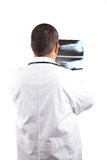 Male doctor examining x-ray Royalty Free Stock Image