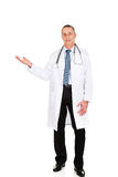 Male doctor holding copyspace in right hand Royalty Free Stock Images
