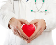 Male doctor holding heart Stock Photography