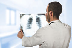 Male doctor looking at the x-ray picture Royalty Free Stock Photos