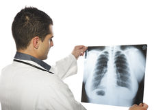 Male doctor looking at the x-ray picture Stock Images